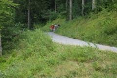 Napfwanderung 2010